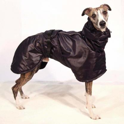 manteaux pour whippets